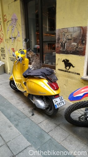 Chat scooter